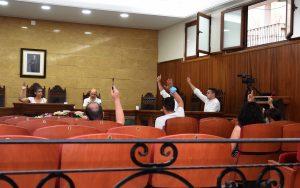 Votación en el Pleno Ordinario, celebrado el 8 de Julio.