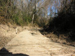 Imagen otoñal de la ruta Huertica - Cañaverosa, con los arbole desnudos de hojas en una mañana soleada.